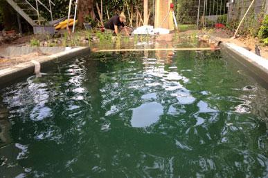 schwimmteich und naturpool ruhrgebiet schwimmteichexperten aus dem gartenbau. Black Bedroom Furniture Sets. Home Design Ideas